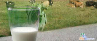 нормализованное молоко